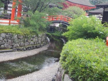 糺の森・下鴨神社
