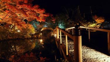 秋の特別夜間拝観 金戒光明寺