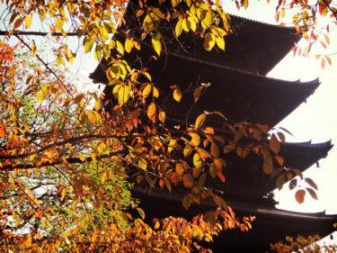 世界遺産巡り 東寺