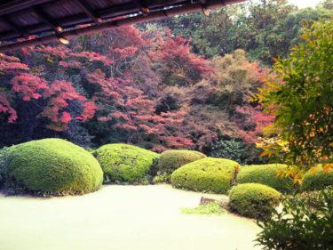 自然あふれる美しい日本庭園 詩仙堂