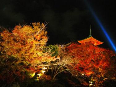 2020年 秋のライトアップ 清水寺