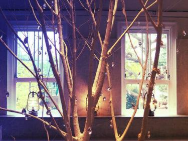 京つづりセレクト・フォトジェニックなカフェ