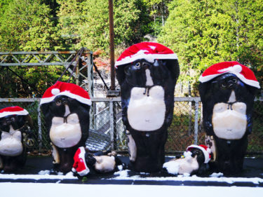京都観光 冬のトロッコ列車