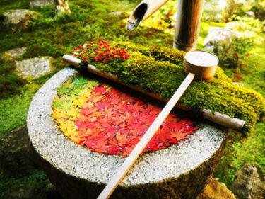 京つづりセレクト・フォトジェニックな寺院7選