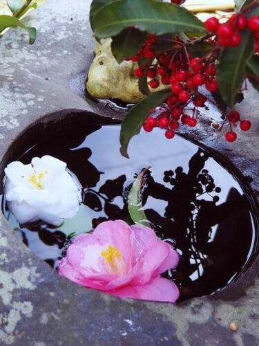 桜と椿の共演 春の特別拝観「平岡八幡宮」