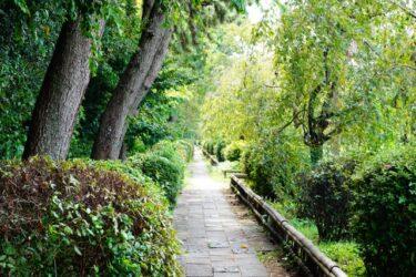 京の散歩道・5選