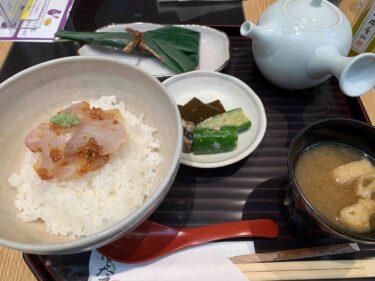 和久傳をカジュアルに 京都駅「はしたて」